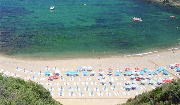 Dalia Beach Club 1